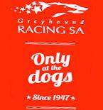greyhound-racing
